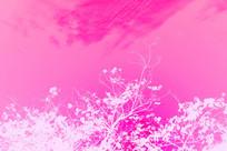 植物纹理粉红背景