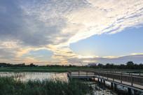 人工湿地栈道夕阳
