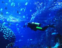 深海翱翔-潜水