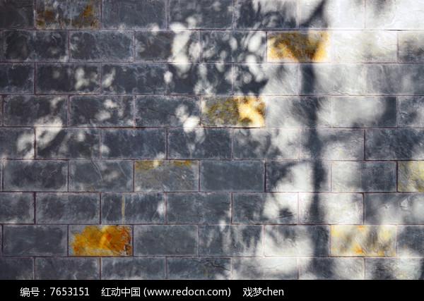 树影格子墙壁背景素材图片
