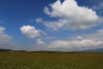 一望无际的草原