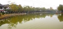 泛黄的公园湖面