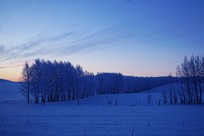 树林雾凇雪景