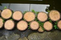树桩石墩素材图片
