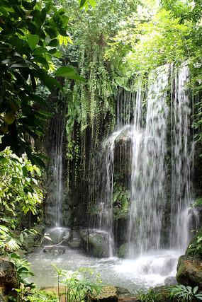 热带雨林里的瀑布