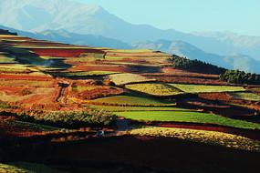 色彩斑斓的红土地