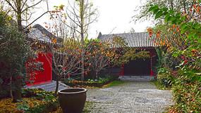 老建筑的院落秋季景观