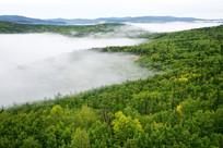 山林云海晨雾风景