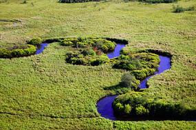 湿地草甸河流