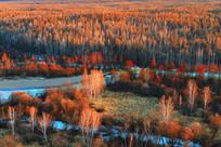 冰河树林暮色风景