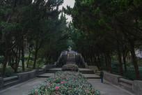 竹山公园松树走廊