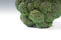 西蓝花蔬菜高清晰大图