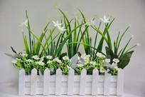 白色兰花塑料花盆