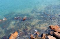 清澈透底的海水