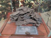 三峡博物馆展品灰黑色白云岩化页岩