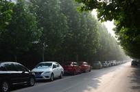 汽车与环境
