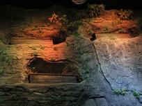 三峡古代悬棺