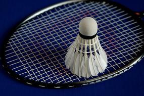 球拍上的羽毛球