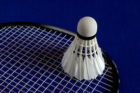 体育用品羽毛球和球拍
