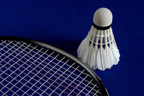 羽毛球和球拍