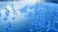 冰封的河流草叶霜花