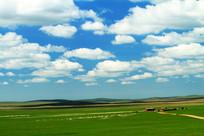 牧场羊群和人家风景