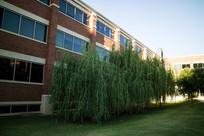 美国俄克拉荷马大学教室