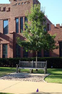 美国俄克拉荷马大学校园内的座椅