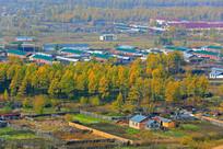 秋天的林区小镇风光