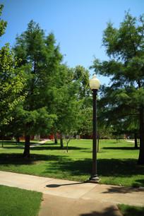 美国俄克拉荷马大学校园绿化