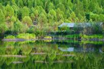 湿地湖泊景观