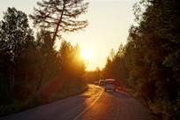 夕阳下森林公路行驶的车辆
