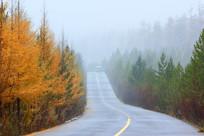 烟雨蒙蒙秋林公路