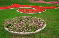 草地上美丽的花坛