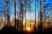 电脑画《树林日出》