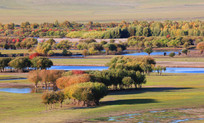 额尔古纳湿地秋季风光