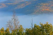 秋季山林云雾景观