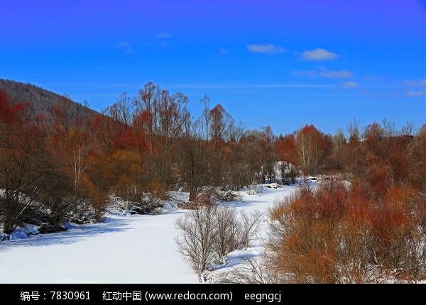 原创摄影图 自然风景 森林树林 冰河红柳林  请您分享: 素材描述:红动
