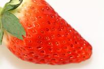 草木水果特写