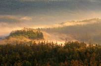 秋季山林晨雾景观