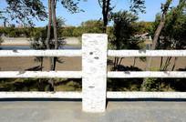 桦树创意围栏