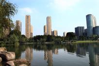 郢州公园一角