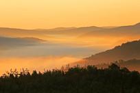 大兴安岭晨雾景观