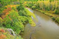 莫尔道嘎河畔秋季景观