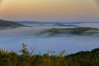 夏天的晨雾山林