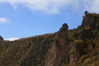 蓝天山脉秋季树木
