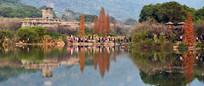 秋天湖泊风景图片