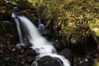溪流山石青苔植被