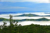 内蒙古大兴安岭森林晨雾风光
