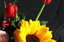 向日葵和红玫瑰
